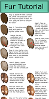 Fur Tutorial by Mauston-girl
