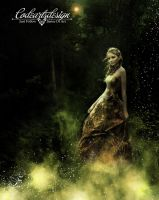BEAUTY IN THE FOREST by codeartworks