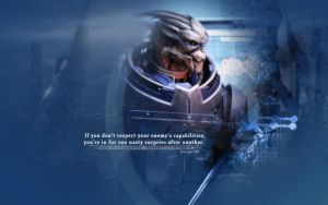 Garrus: Respect by Belanna42