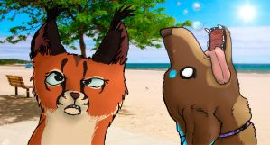At the beach by Gingastar18