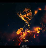 Deathly Hallows Poster: HP by eslis