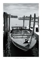 A boat from Venice by ESDY
