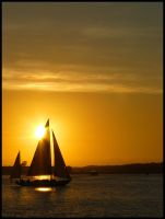 Sailboat in Newport by traviscaouette