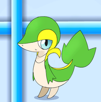 My Snivy by PokeHihi