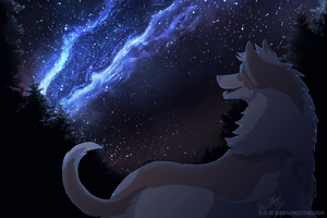 Seeking out the Starry Sky by Kairi292
