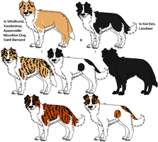 6-Way Mixed Breeds by Leonca