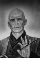 Voldemort drawing by lyyy971