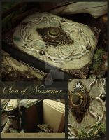 Son of Numenor by luthien27