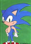 Sonic the Hedgehog by DJgames