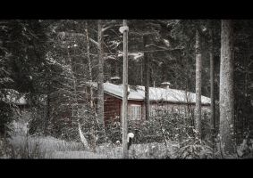Logger housing by wchild