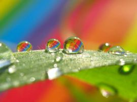 Rainbow Drops by Piombo