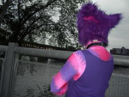 Cheshire Cat by the river 3 - Anthrocon 2012 by toberkitty