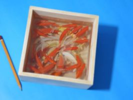 Goldfish Art 3d (9) by goldfishinspiration