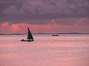 http://th04.deviantart.net/fs20/300W/i/2007/263/3/a/Zanzibar_Dhow_by_radarch.jpg