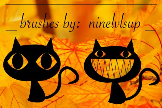 Funky Cat Brushes by ninelvlsup
