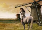 The Tale of Don Quixote by ifux