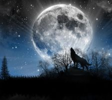 Blue Moon by Chrippy1