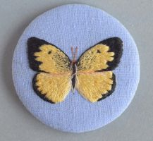 Southern Dogface Butterfly by imagination-heart