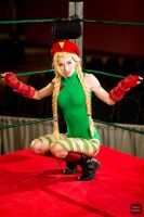 Ringside Cammy by MeganCoffey