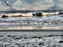 Seascape Background by FairieGoodMother