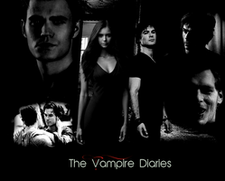 The Vampire Diaries - Elena and Damon - Free .PSD by mconev