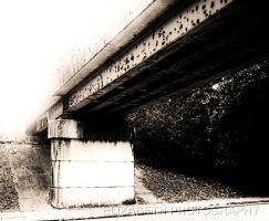 Bridge by DrowningSignificance
