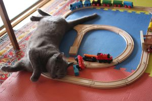 Playing trains by 914four