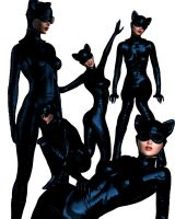 Cat Woman Collection 1 by indigodeep