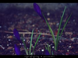 204 - Sign Of Spring by gerrish