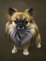 Lupu the chihuahua by LouhiArt
