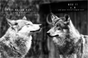 .:Little Wolf Story:. by WhiteSpiritWolf