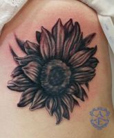 Black and Grey Sunflower Tattoo on Ribs by seanspoison