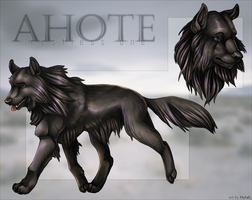 Commission : Ahote by Nylak