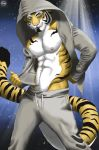 The Tiger Troy by KaynesMoon