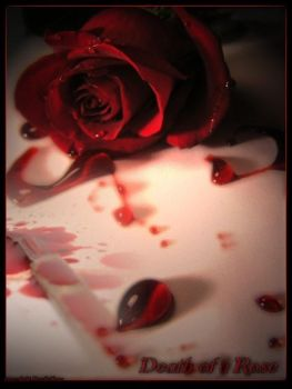 Death of a Rose by Ceonyc