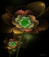 apophysis fractal  wallpaper -flowers by SvitakovaEva