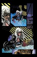black cat color sample 2009 by westwolf270
