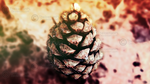 Pine-cone by TheIcemanPL