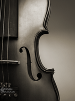Violin by ElyneNoir