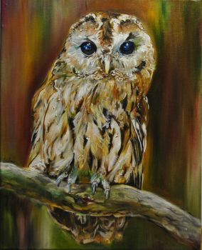 Owl painting by EvelineVdp