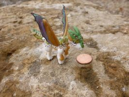 Outdoor Pictures of Micro Dragon-Earthy by Blitzava