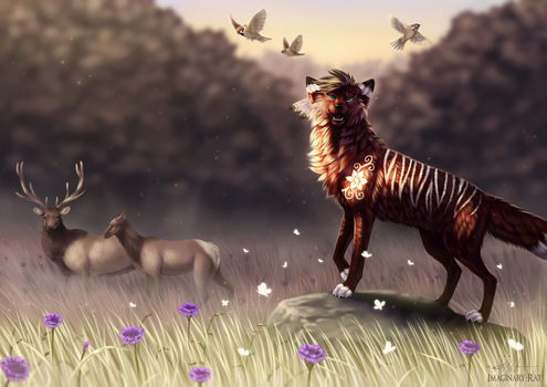 Meadow (+video) by Imaginary-Rat
