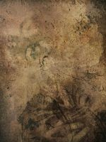 Antique tex 01 by DH-Textures