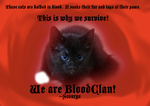 Scourge by cats-of-all-clans