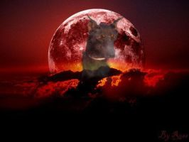 Red moon dobermann by Rosshi