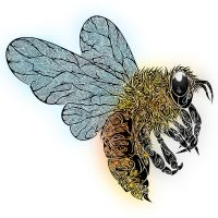 Tribal Bee by Dessins-Fantastiques
