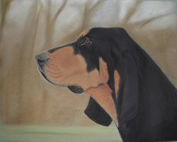 Coonhound by chelleblock