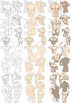 Male Figure Study Process by CourtneysConcepts