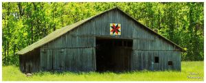 Allons Tennessee Quilt Trail Barn by TheMan268