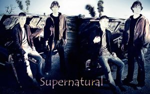 Supernatural Season 1 by Lauren452